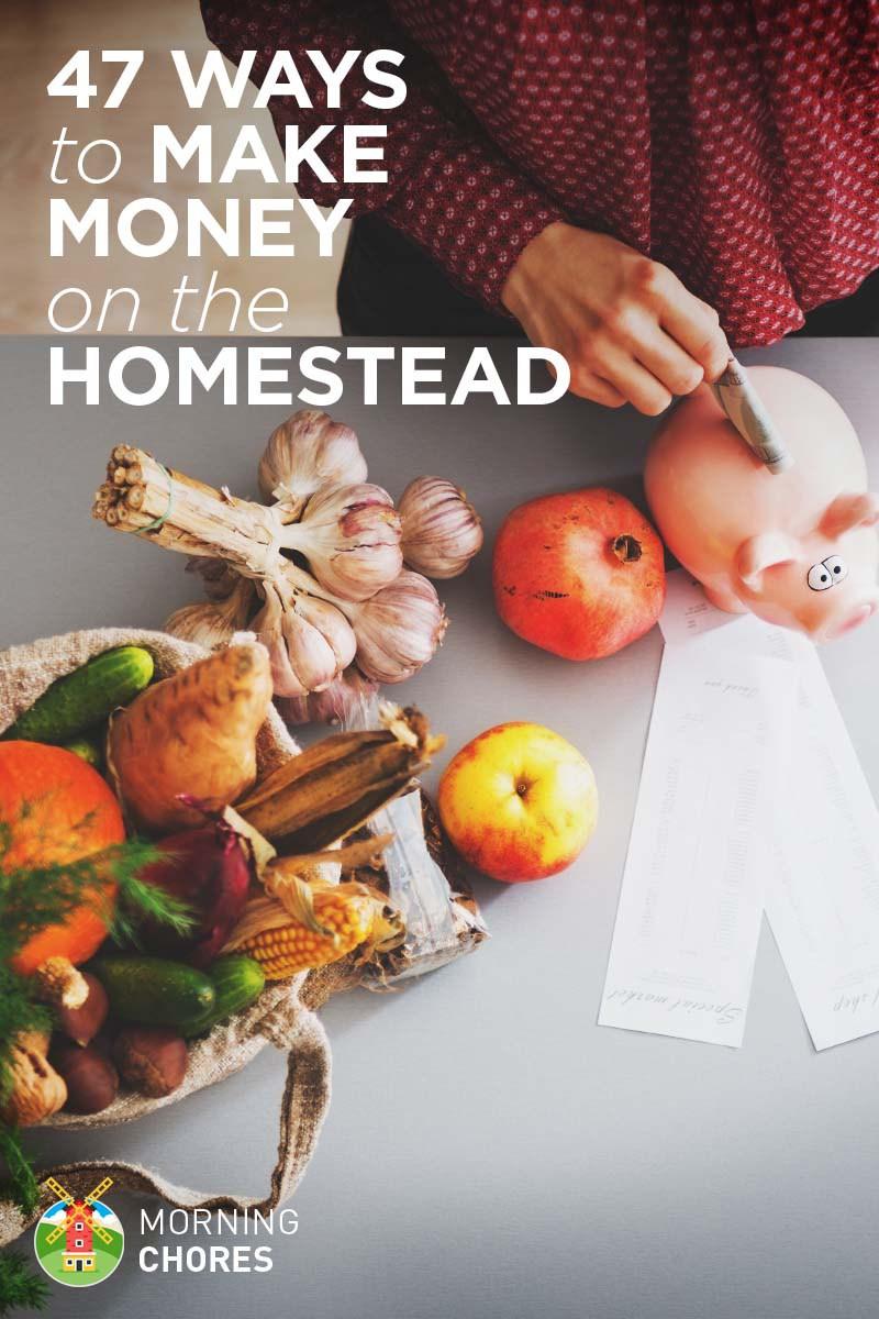 42-Ways-to-Make-Money-Homesteading