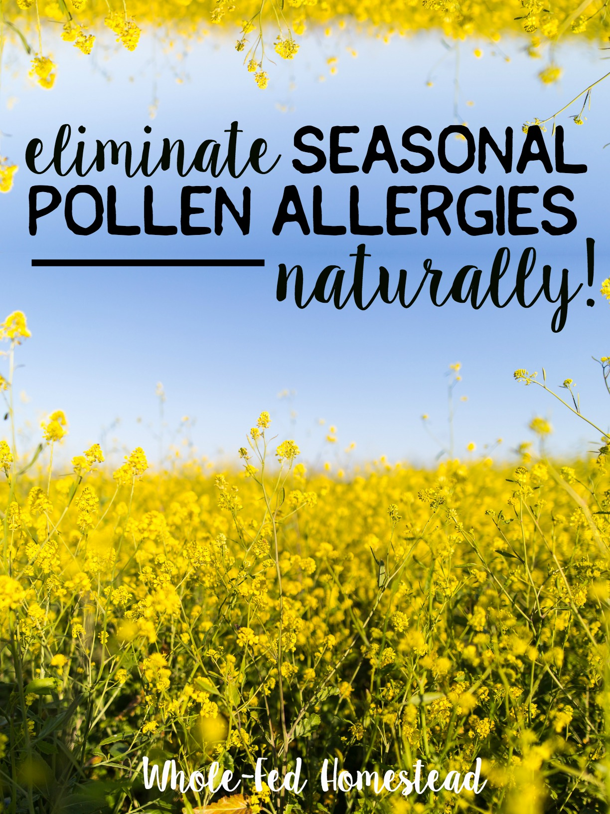 Eliminate season pollen allergies naturally