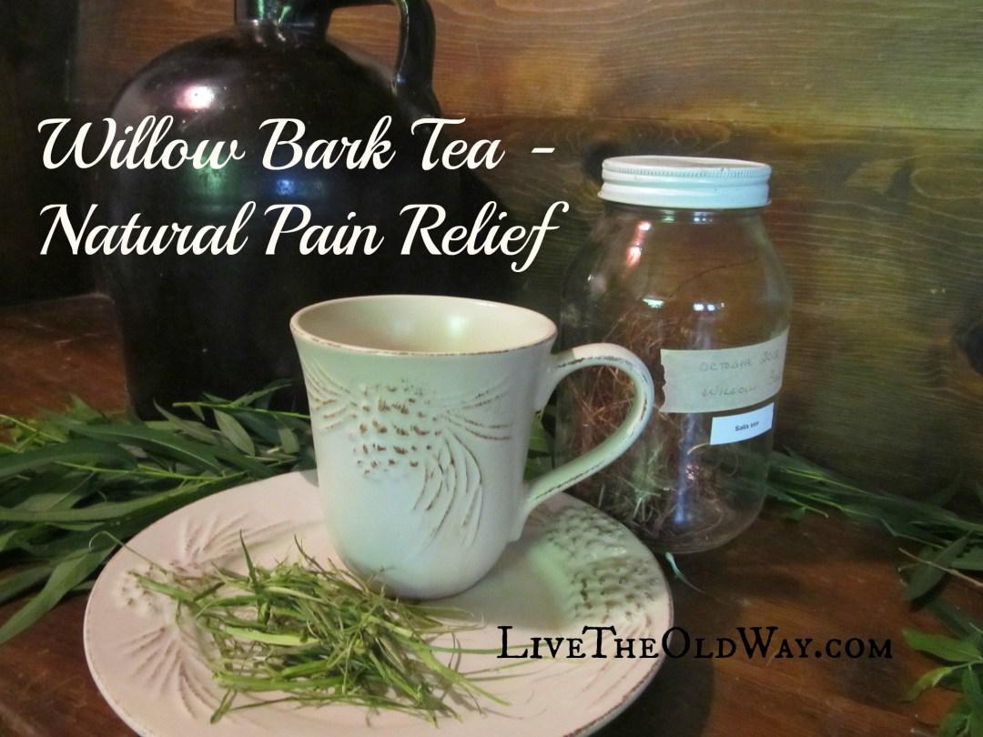 Willow-Bark-Tea-1