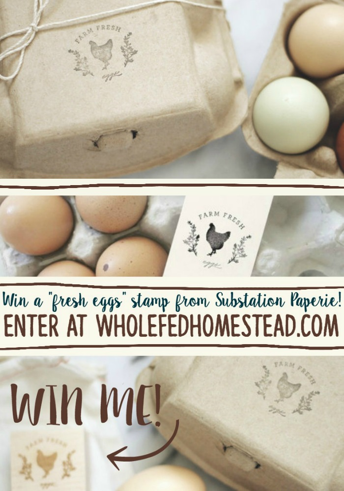 Egg Stamp Substation Paperie Giveaway Tall