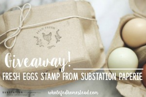 "{Giveaway!!} ""Fresh Eggs"" Egg Carton & Label Stamp from Substation Paperie"