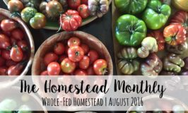 Homestead Monthly August 2016