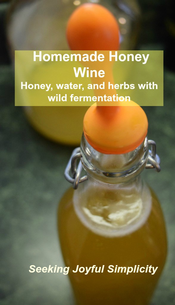 fermenting-honey-wine-1