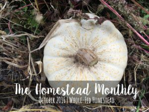 Homestead Monthly: October 2016 {shiitakes, rare apples, and an unfortunate honey harvest}