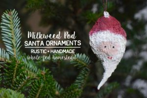 Milkweed Pod Santa Ornaments {Handmade Gift}
