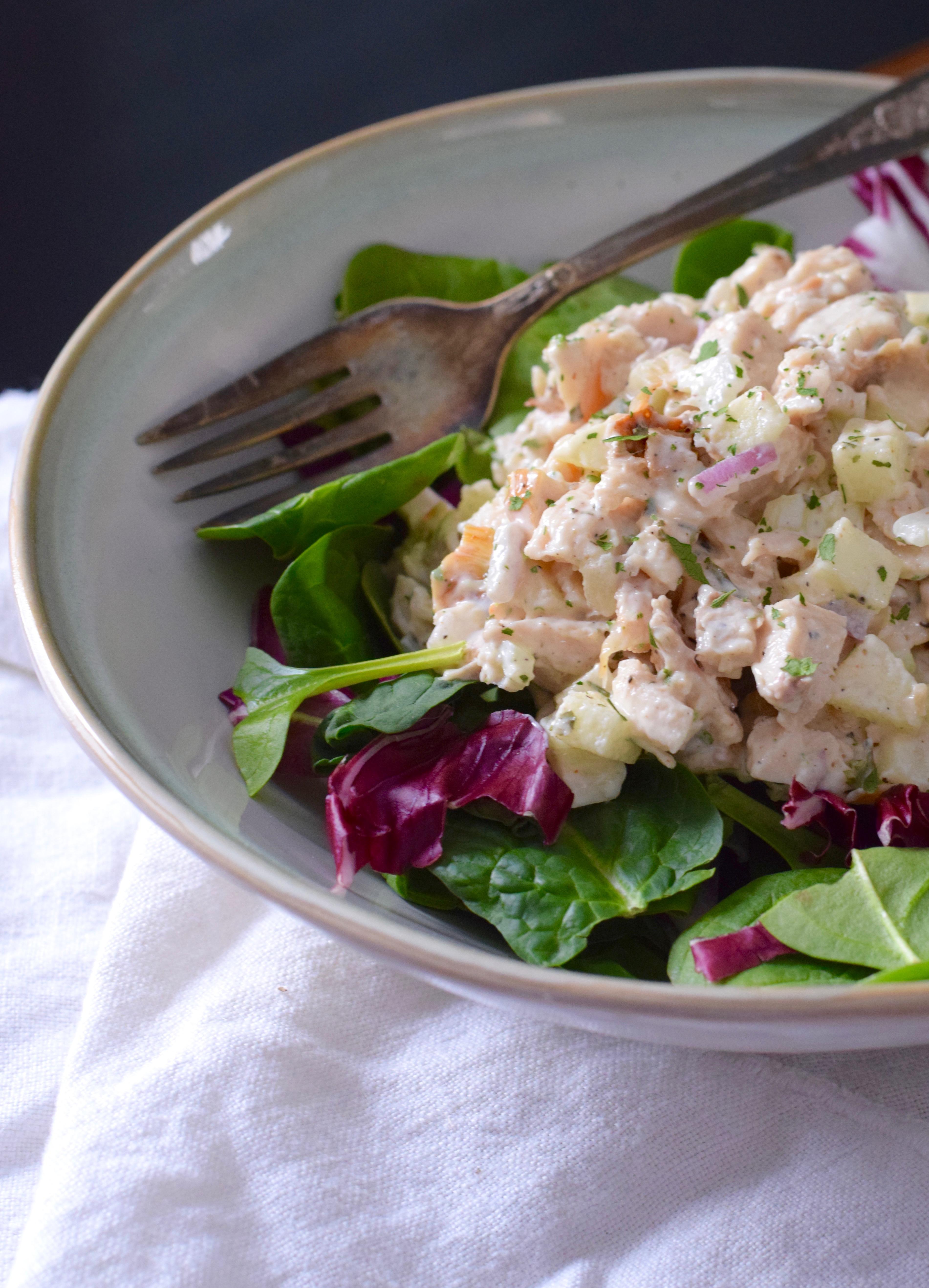 Apple Chicken Salad 1V - 1