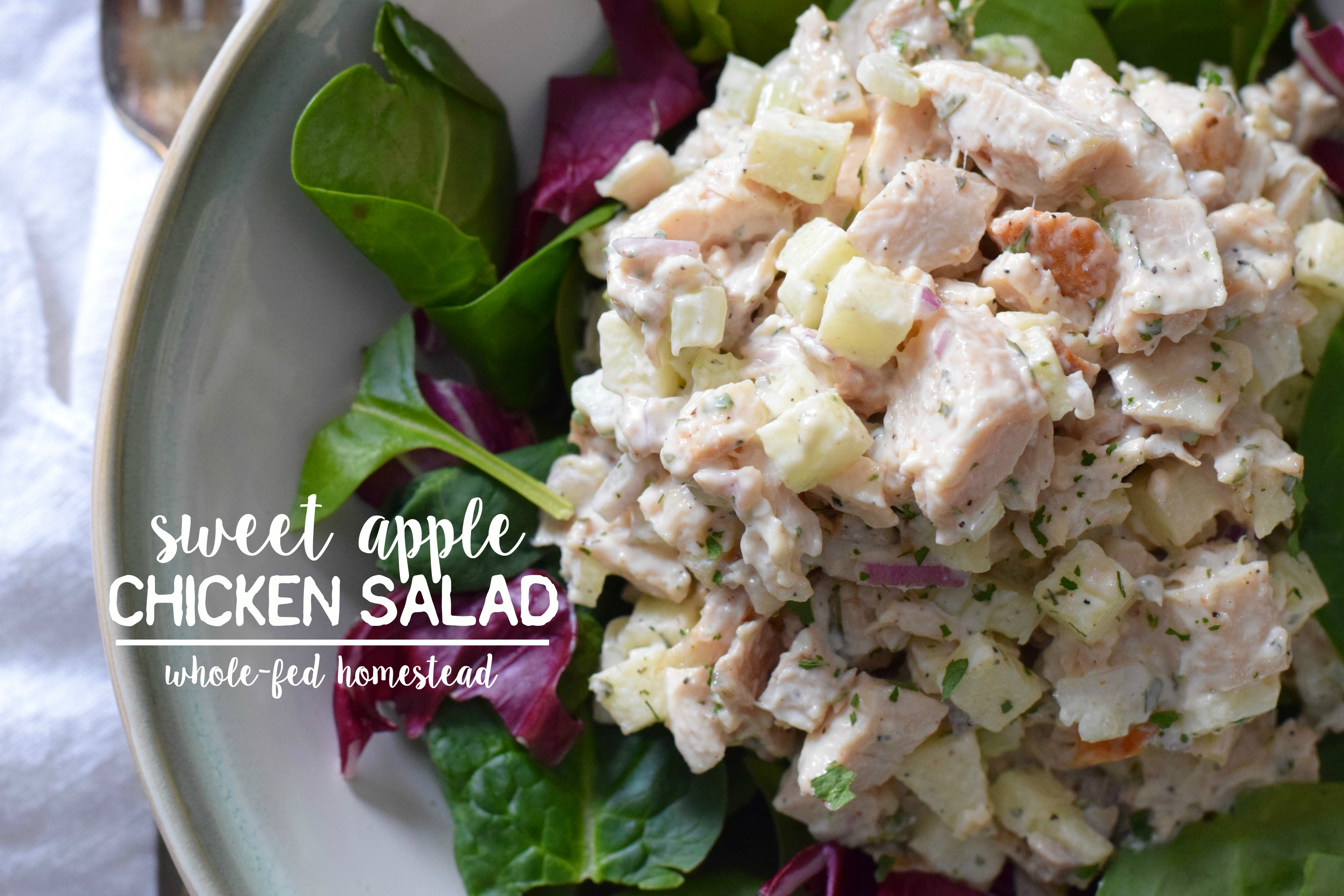 Sweet Apple Chicken Salad | Whole-Fed Homestead