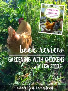 Gardening with Chickens feature