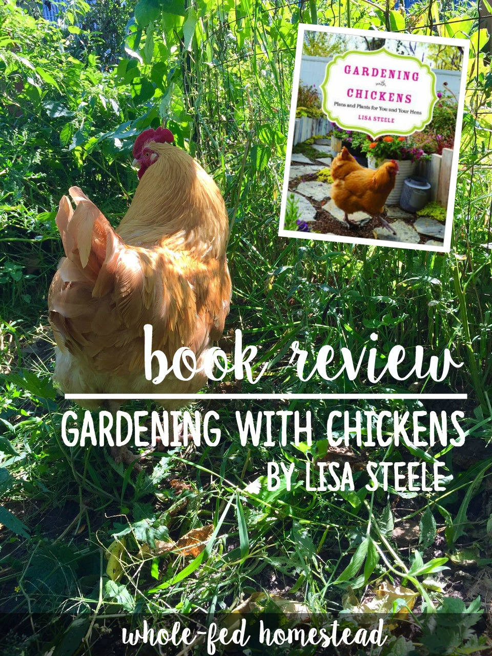 Gardening with Chickens by Lisa Steele: Book Review