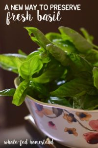 A New Way to Preserve Fresh Basil (freezing method, and NOT in an ice cube tray!)