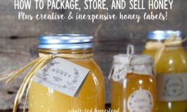 How to Package, Store, and Sell Honey, plus Creative & Inexpensive Honey Labels