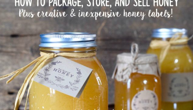 How to package, store, and sell honey