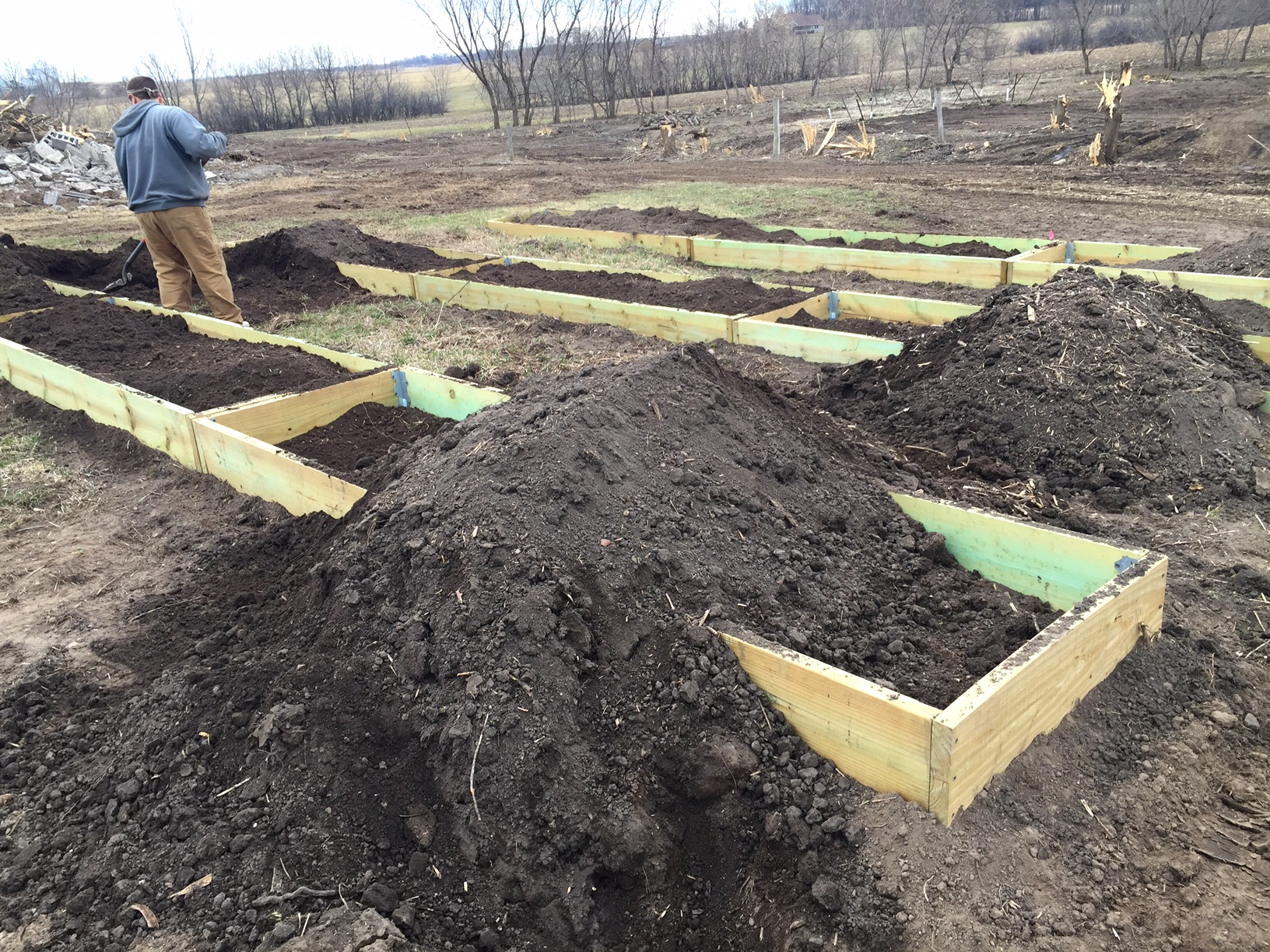Raised orchard bed, Homestead Monthly: April {orcharding, raised beds, and fungus} | Whole-Fed Homestead