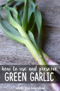 How to Use and Preserve Green Garlic