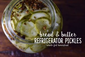 {Easy} Bread and Butter Refrigerator Pickles Recipe