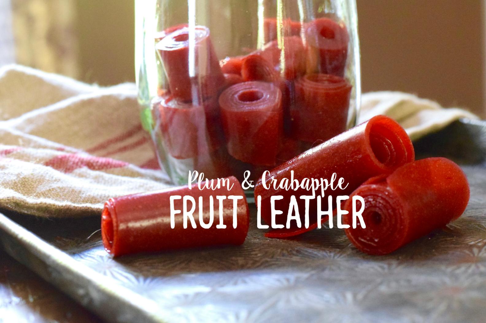 Plum & Crabapple Fruit Leather Recipe