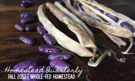 Homestead Quarterly – Fall 2017: Harvest All the Things!