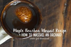 Maple Bourbon Wassail Recipe + How to Wassail an Orchard