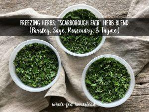"Freezing Herbs: ""Scarborough Fair"" Herb Blend (Parsley, Sage, Rosemary, & Thyme)"